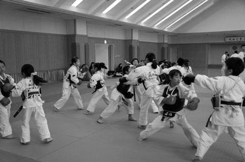 愛媛県連盟強化練習(8月) ご案内