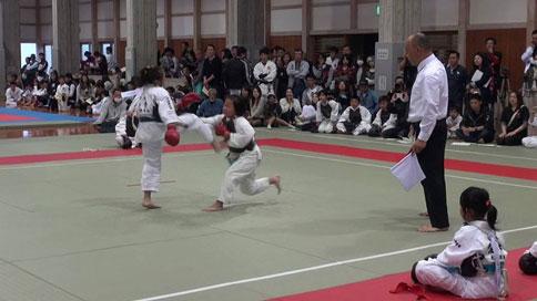 第10回日本拳法四国総合選手権大会 ご案内