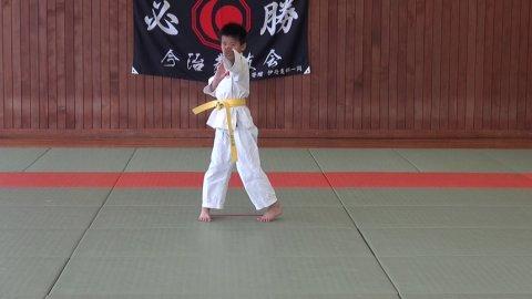 伸流之形 (SYOSHIN) ver. ゆうのすけ by 愛媛県連盟審査