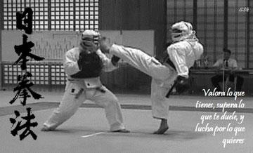 第1回愛媛県日本拳法選手権大会